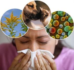 Lyudyam-s-allergiyami